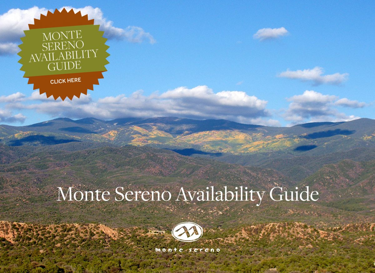 Availability Guide-cover
